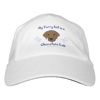 chocolate lab hat