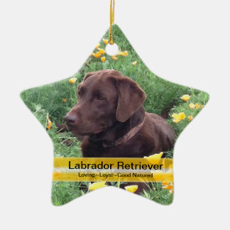 Chocolate Lab in California Poppy Patch Christmas Ornament