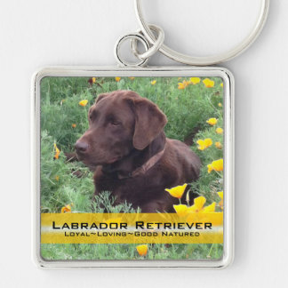 Chocolate Lab in California Poppy Patch Key Ring