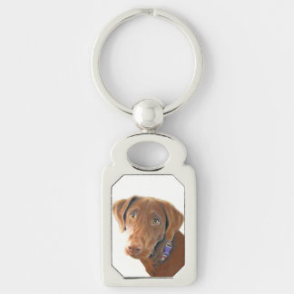 Chocolate Lab keychain, key ring, retriever Silver-Colored Rectangle Key Ring