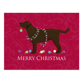 Chocolate Lab Merry Christmas Design Postcard