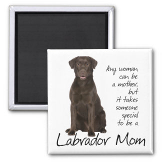 Chocolate Lab Mom Square Magnet