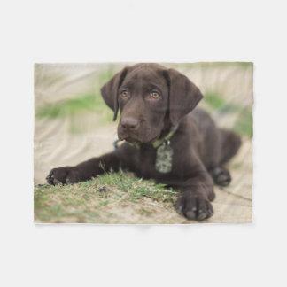 Chocolate Lab Puppy Fleece Blanket