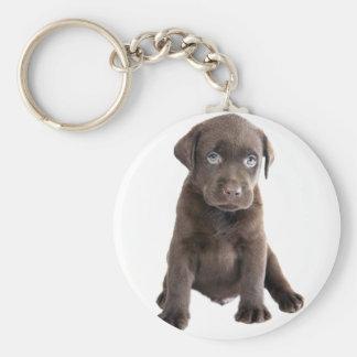 Chocolate Lab Puppy Key Chain