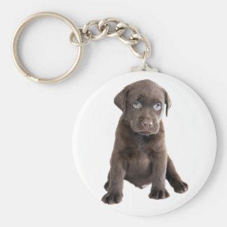 Chocolate Lab Puppy Keychains