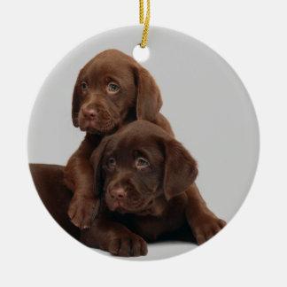 Chocolate Lab Puppy Ornament