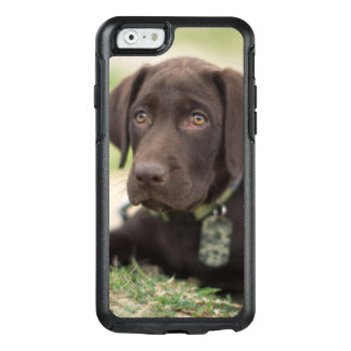Chocolate Lab Puppy OtterBox iPhone 6/6s Case