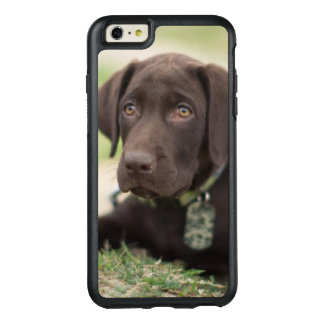 Chocolate Lab Puppy OtterBox iPhone 6/6s Plus Case