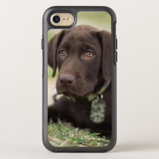 Chocolate Lab Puppy OtterBox Symmetry iPhone 8/7 Case