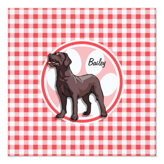 Chocolate Lab; Red and White Gingham 13 Cm X 13 Cm Square Invitation Card