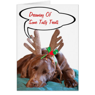 Chocolate Lab With Antlers Photograph Greeting Card