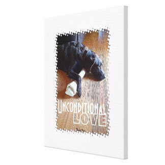 Chocolate Lab With Bone Photograph Canvas Prints