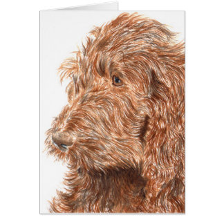 Chocolate Labradoodle #2 Greeting Card