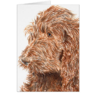 Chocolate Labradoodle #2 Notecard Note Card