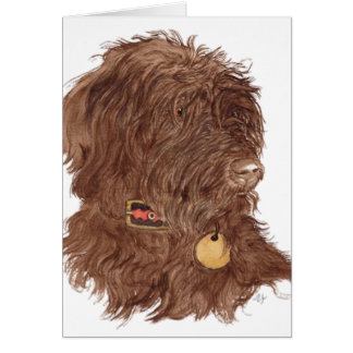 Chocolate Labradoodle Xena Greeting Cards