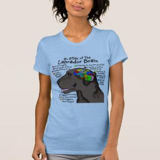 Chocolate Labrador Brain Atlas T-shirts