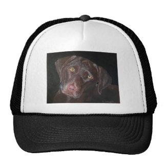 Chocolate Labrador Trucker Hats
