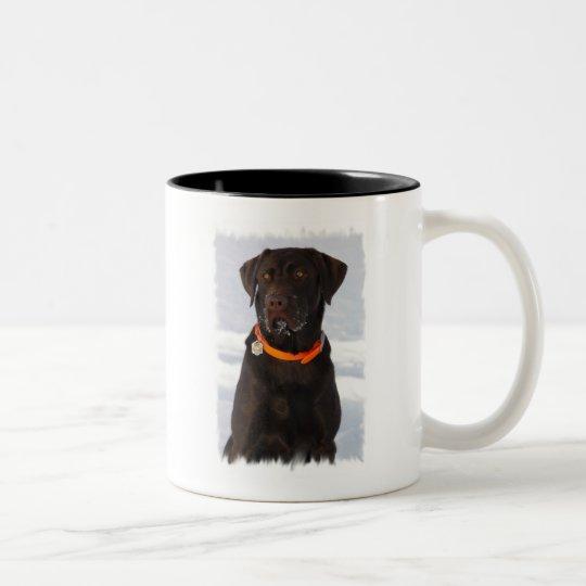 Chocolate Labrador Coffee Mug