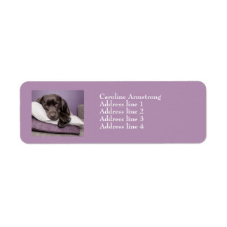 Chocolate labrador dog custom address labels