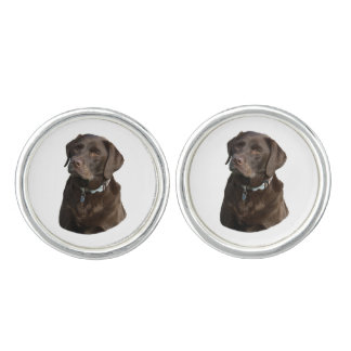 Chocolate Labrador dog photo portrait Cuff Links
