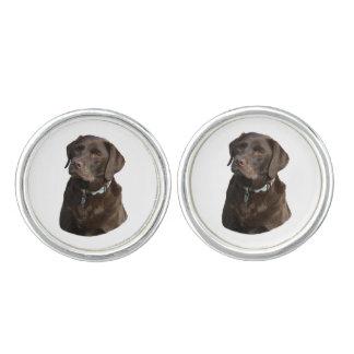 Chocolate Labrador dog photo portrait Cufflinks