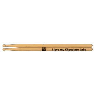 Chocolate Labrador dog photo portrait Drumsticks