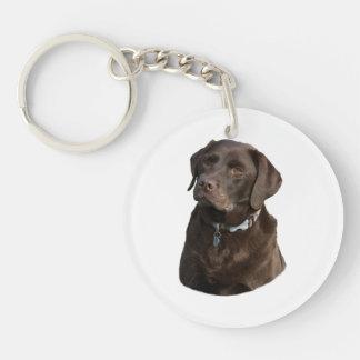 Chocolate Labrador dog photo portrait Double-Sided Round Acrylic Key Ring