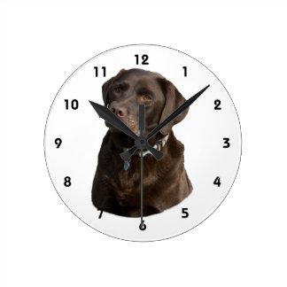 Chocolate Labrador dog photo portrait Wallclocks
