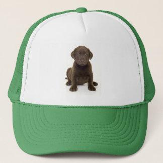 Chocolate Labrador Hat