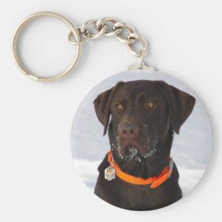 Chocolate Labrador Keychain