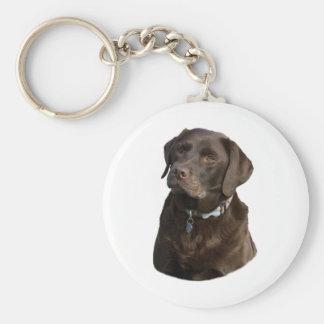 Chocolate Labrador photo portrait Basic Round Button Key Ring