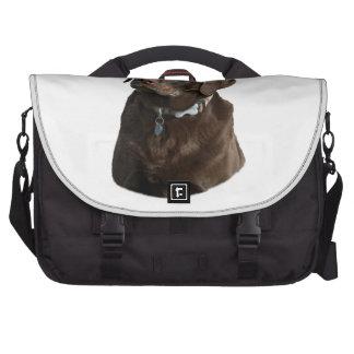 Chocolate Labrador photo portrait Laptop Computer Bag