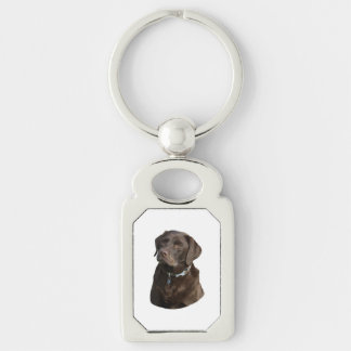 Chocolate Labrador photo portrait Silver-Colored Rectangle Key Ring