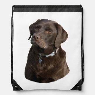 Chocolate Labrador photo portrait Drawstring Bags
