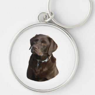 Chocolate Labrador photo portrait Silver-Colored Round Key Ring