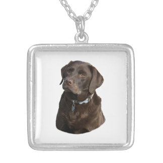 Chocolate Labrador photo portrait Silver Plated Necklace