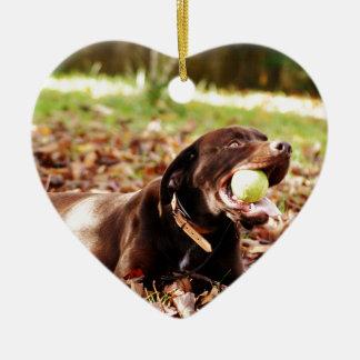 Chocolate Labrador Playing With Ball Christmas Ornament