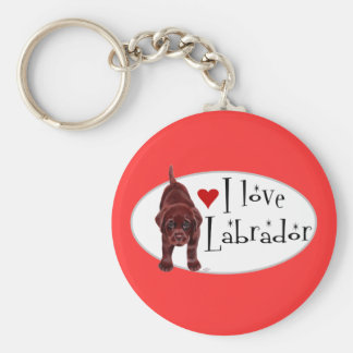 Chocolate Labrador Puppy Basic Round Button Key Ring