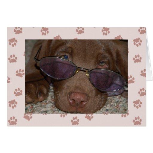 Chocolate Labrador Puppy Card