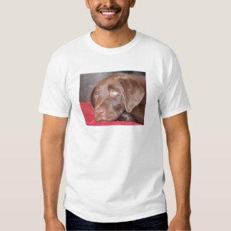 Chocolate Labrador Puppy Ponders T-Shirt