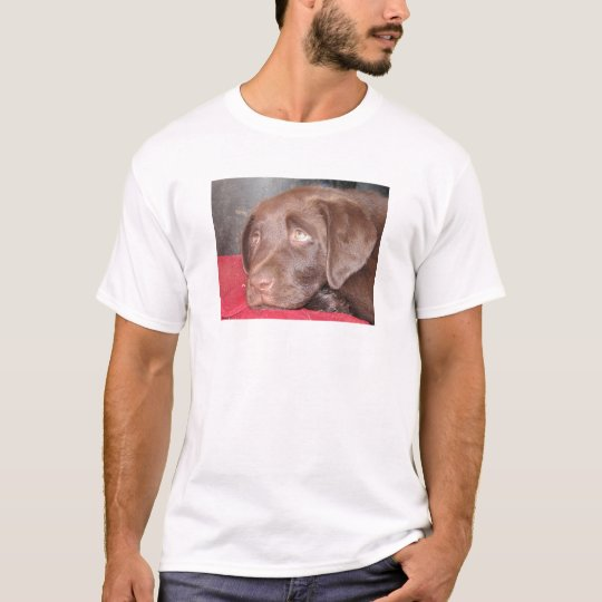 Chocolate Labrador Puppy Ponders T-Shirt