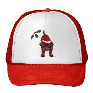 Chocolate Labrador Puppy & Santa Hat Christmas