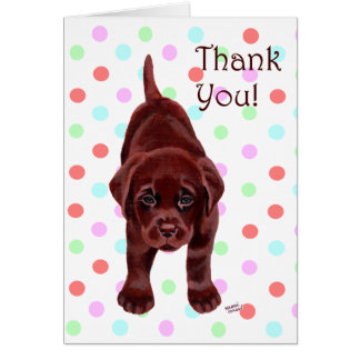 Chocolate Labrador Puppy Thank You Card
