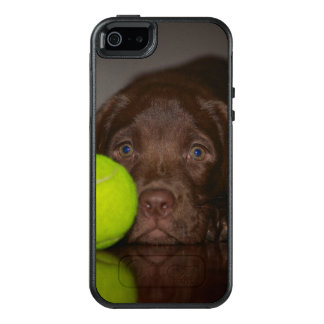 Chocolate Labrador Puppy With Tennis Ball OtterBox iPhone 5/5s/SE Case