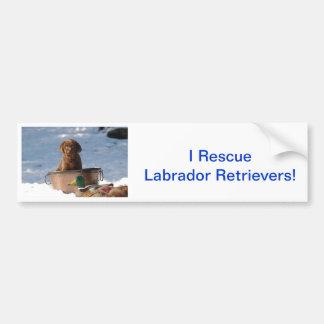 Chocolate Labrador Retriever Car Bumper Sticker