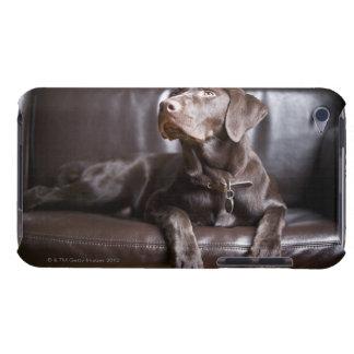 Chocolate Labrador Retriever Case-Mate iPod Touch Case