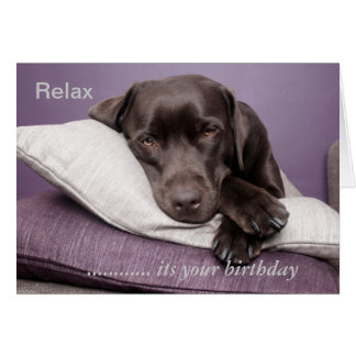 Chocolate labrador retriever custom birthday card