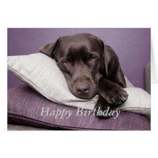 Chocolate labrador retriever custom birthday card
