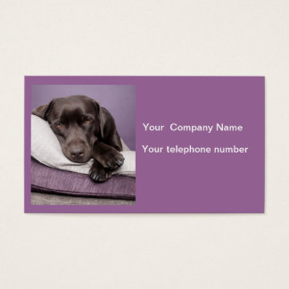 Chocolate labrador retriever custom business card