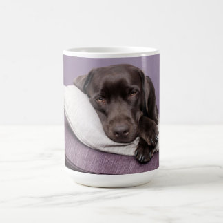 Chocolate labrador retriever dog sleepy on pillows coffee mug